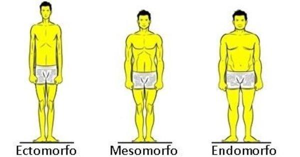 biotipo